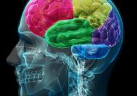 Neuromarketing M3 Estrategia