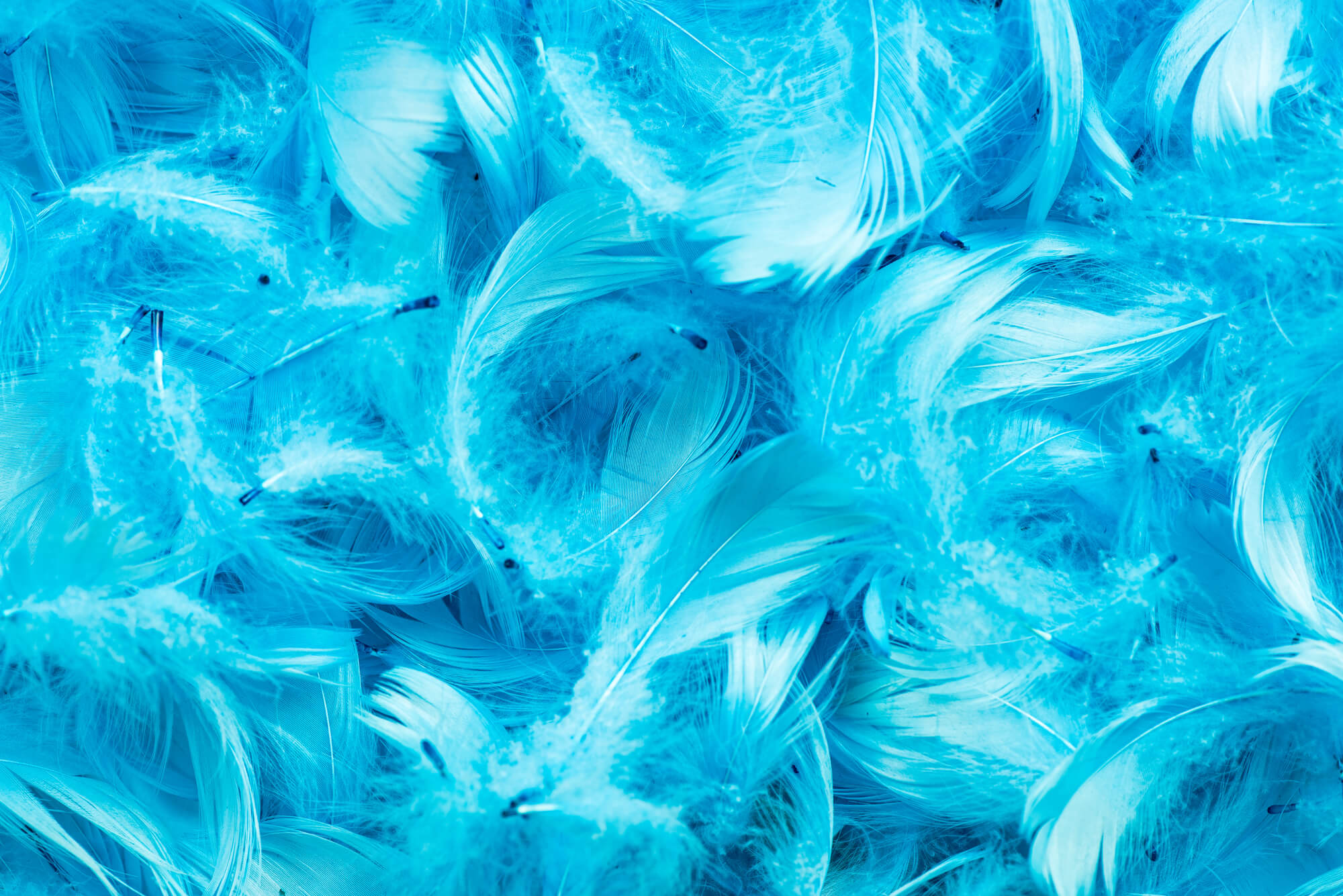 Twitter Analytics: 5 funciones útiles que quizás no conozcas